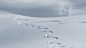 En savoir plus sur la station de ski Mouthe