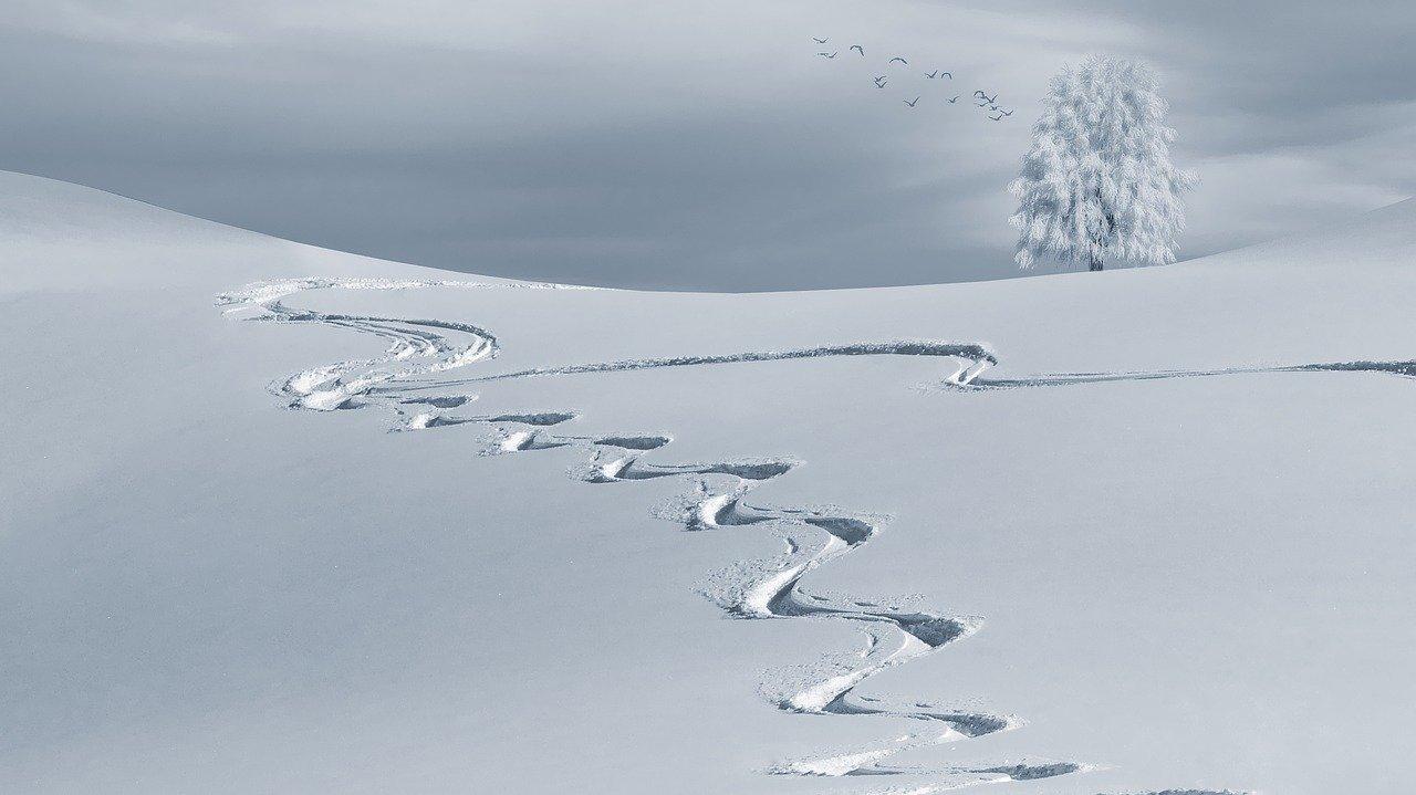 You are currently viewing En savoir plus sur la station de ski Mouthe